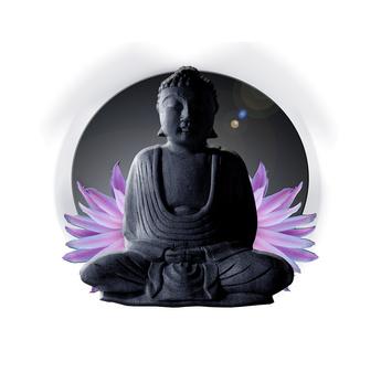 méditation transcendantale